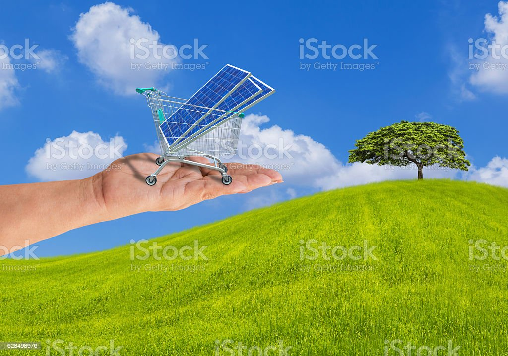 solar panels in shopping trolley cart on hand with tree stock photo