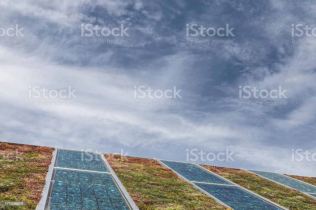 Solar panels on a roof covered with sedum for isolation stock photo