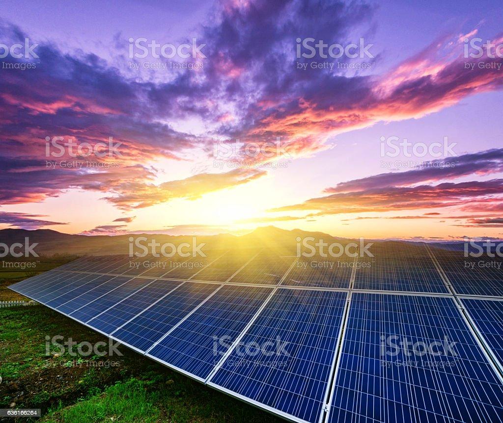 solar panels  under blue sky on sunset stock photo