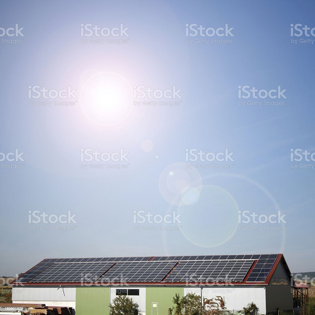 solar plants in the house during sunny weather royalty-free stock photo