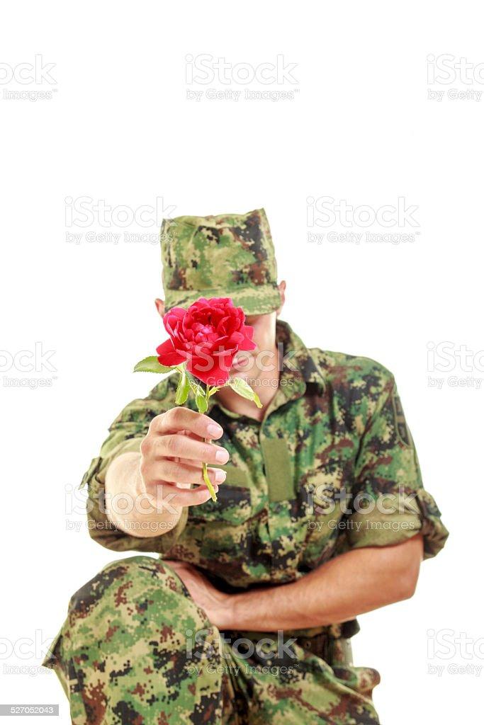 Soldier in camouflage uniform kneeling holding flower stock photo