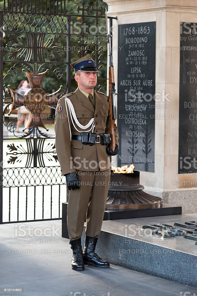 Soldier of the Guard of Honor. stock photo