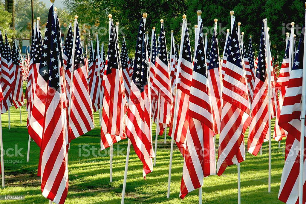 Soldier's Healing Field royalty-free stock photo