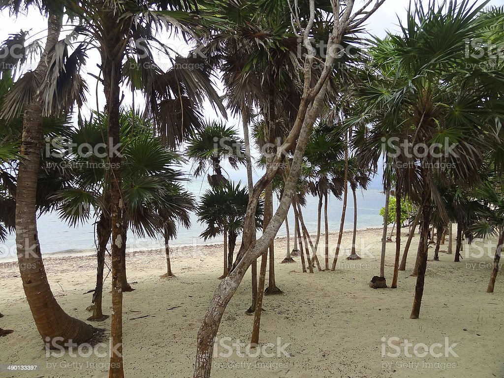 Soliman Bay stock photo