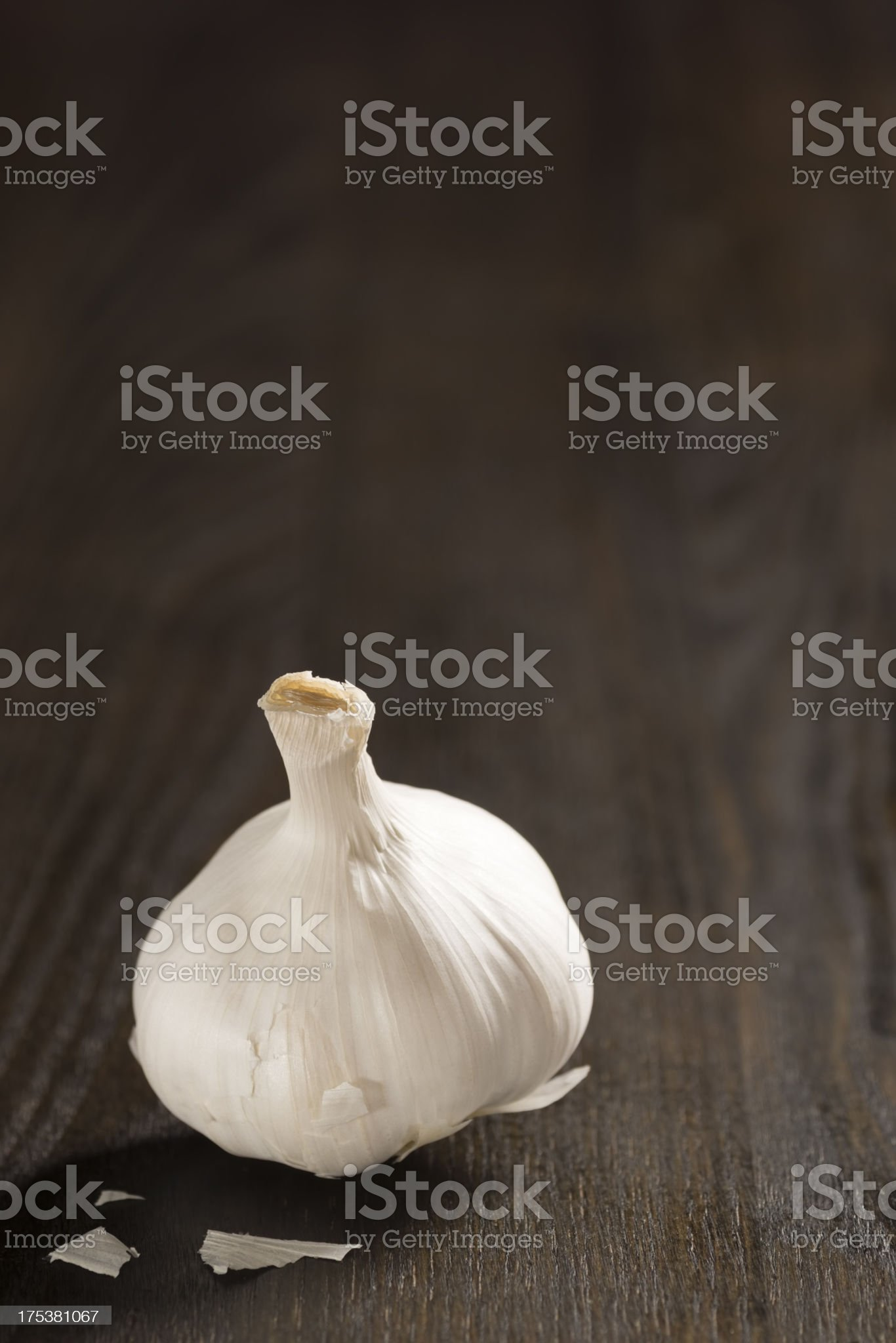 Solitary Garlic Bulb with Copy Space royalty-free stock photo