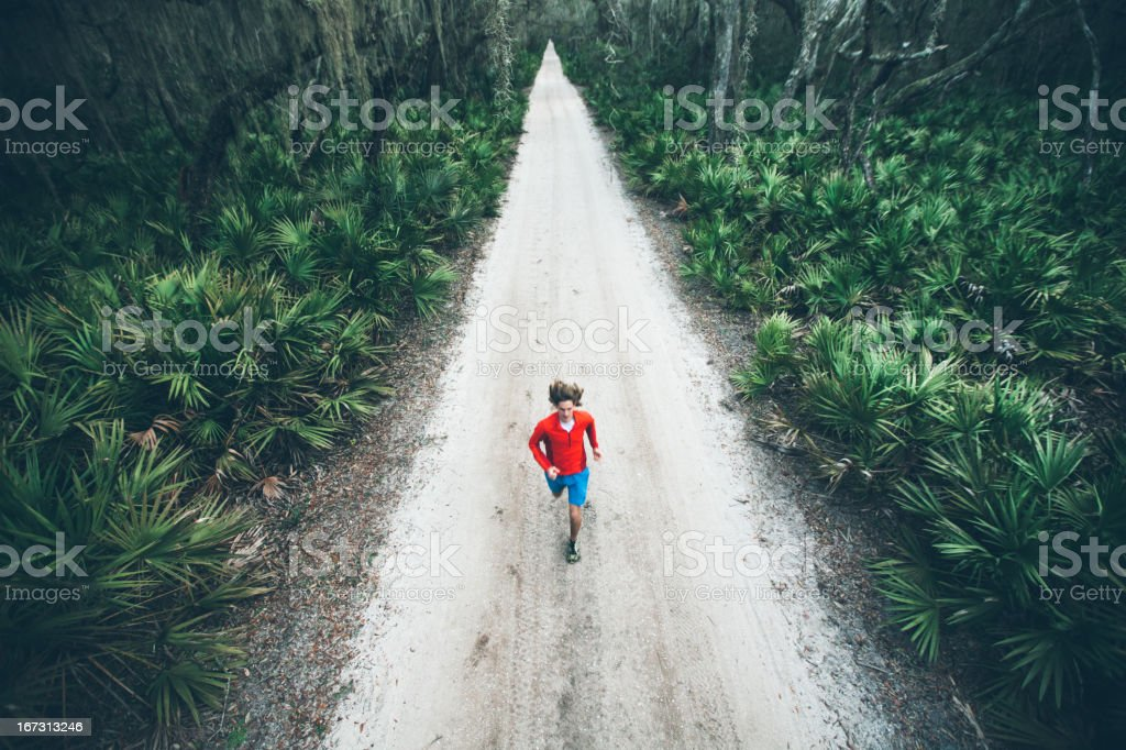 Solitary male runs under trees on road at sunset stock photo