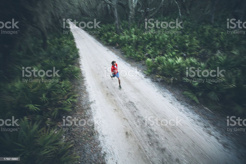 Solitary male runs under trees on road at sunset royalty-free stock photo