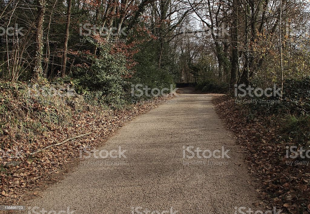 Solitary road royalty-free stock photo