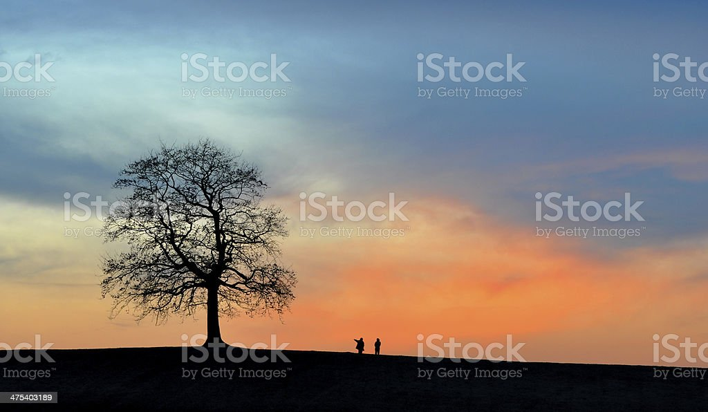 Solitary Tree at Dusk and two Ramblers stock photo