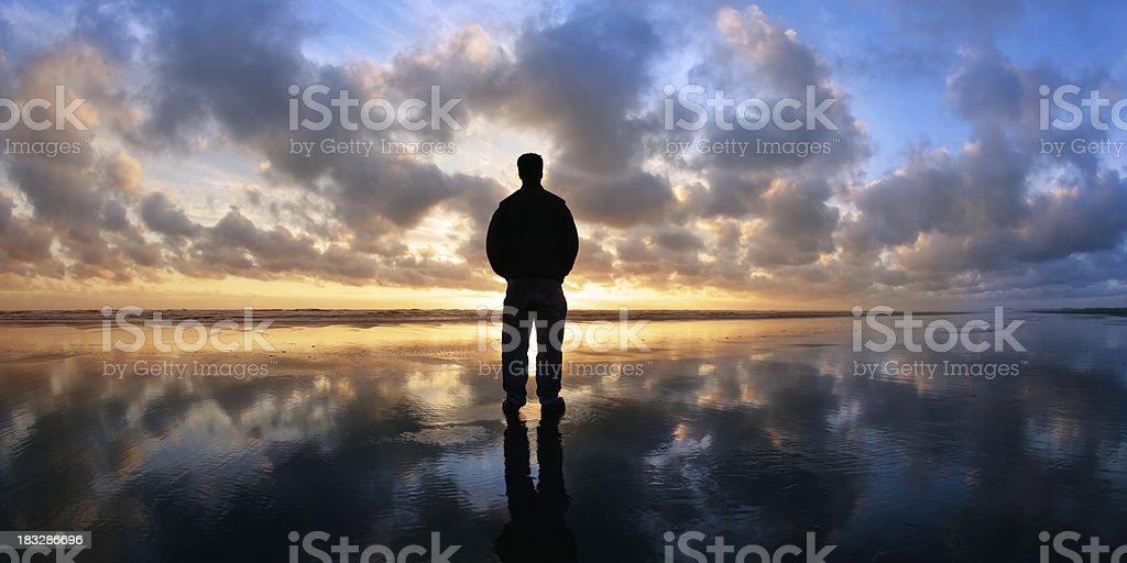 XL solitude beach silhouette royalty-free stock photo