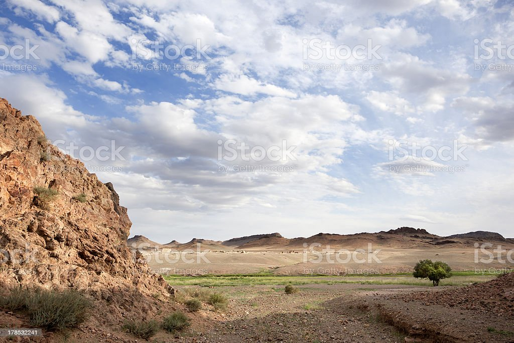 Solitude in the desert royalty-free stock photo