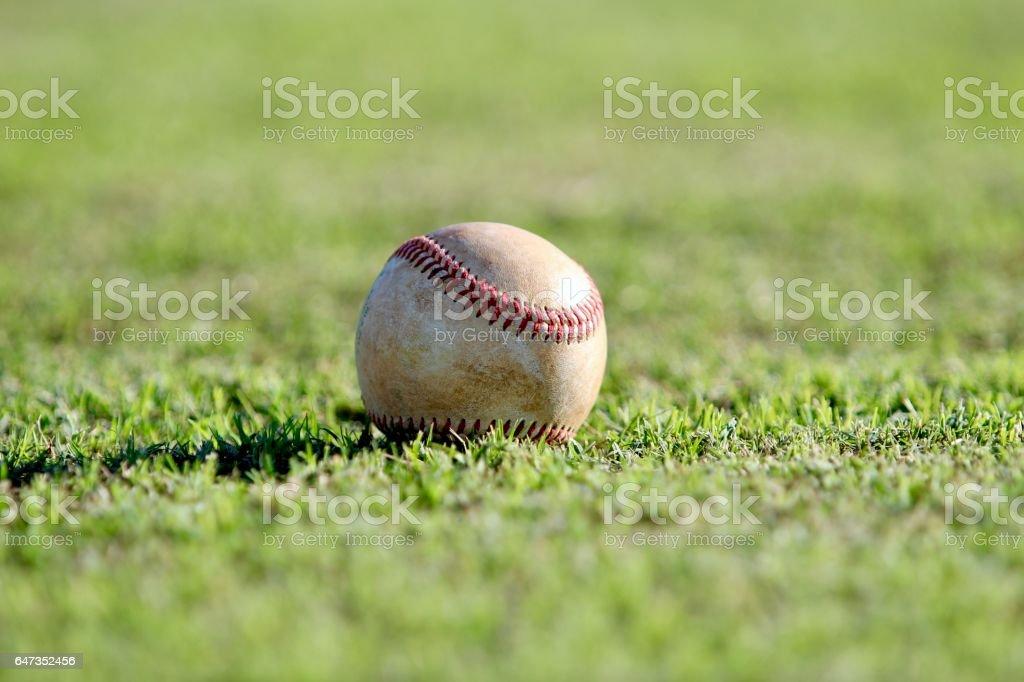 Solo baseball stock photo