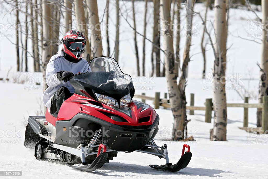 Solo snowmobile rider passing a stand of birch trees stock photo