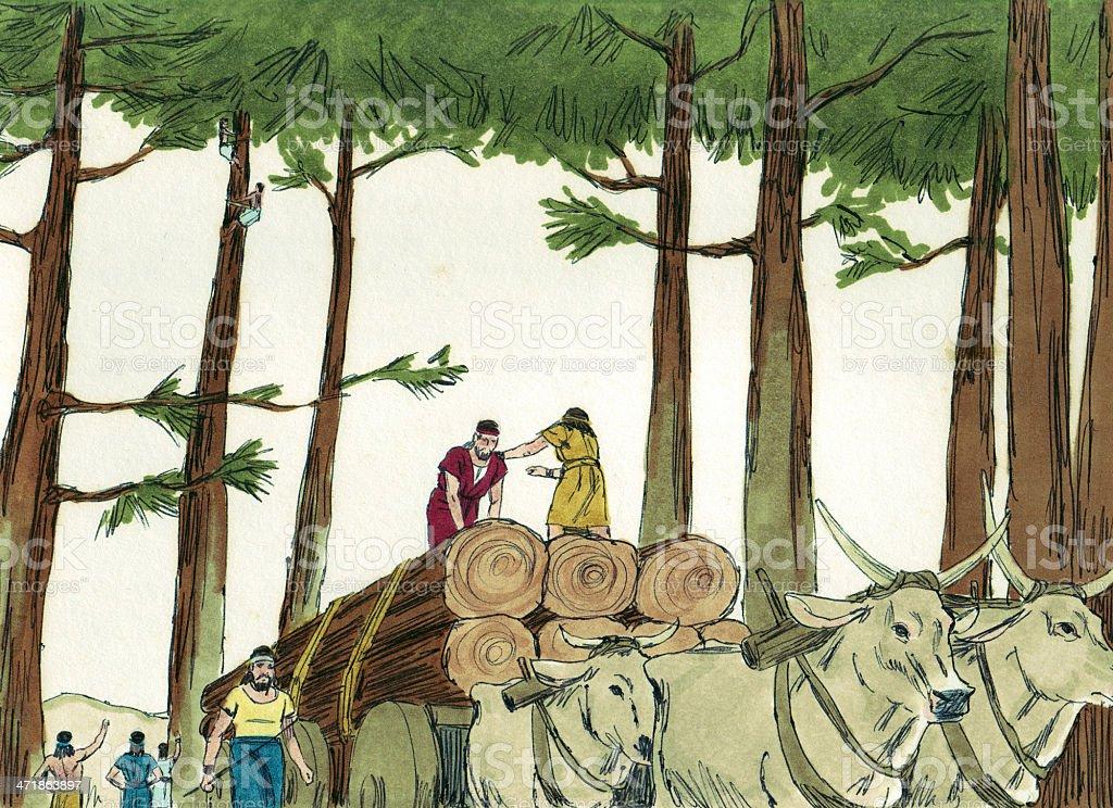 Solomon--Trees Cut Down by King Hiram stock photo