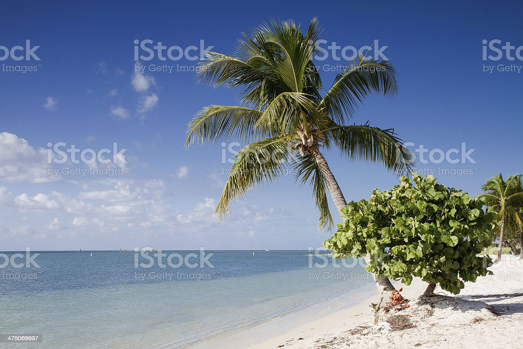 Sombrero Beach on the Florida Keys stock photo
