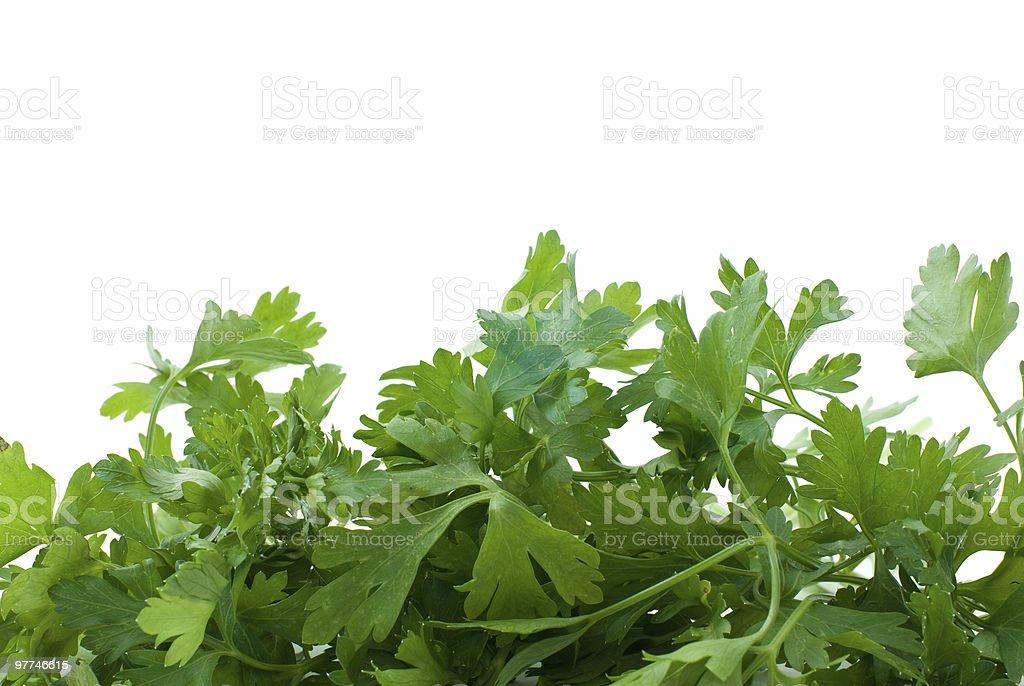 Alguns Salsa verde fresco foto de stock royalty-free
