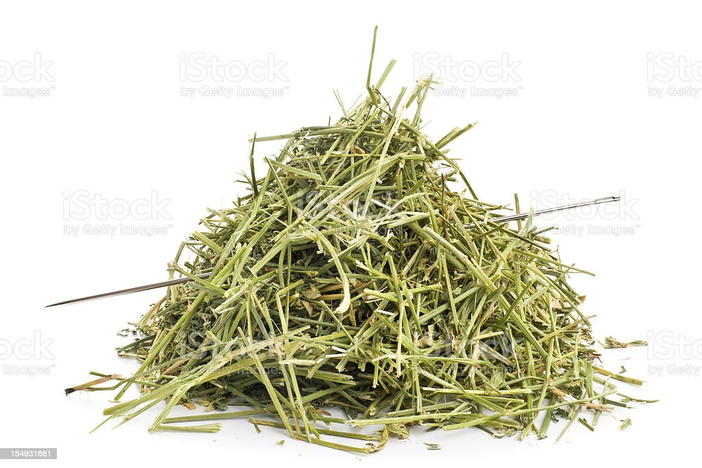 Some needles in haystacks are easy to find stock photo