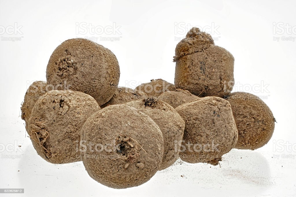 some seed bombs on a white background for highlighting stock photo