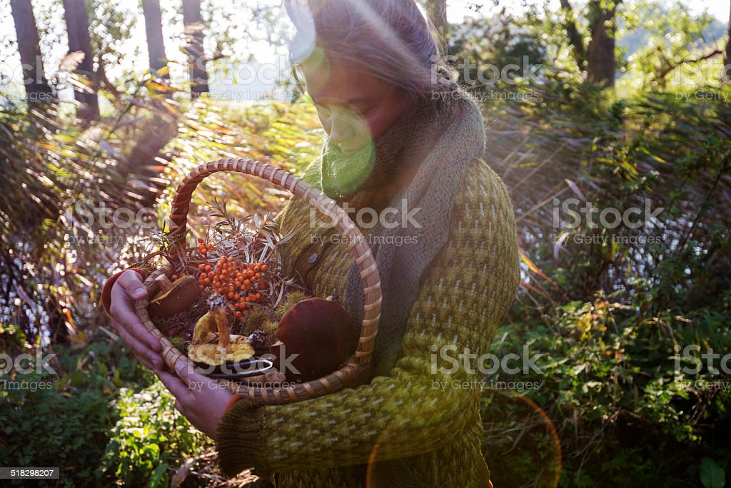 someone foraging for food in a garden stock photo
