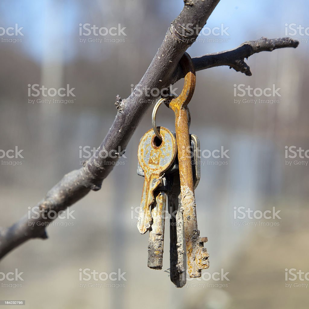 someone lost the keys royalty-free stock photo
