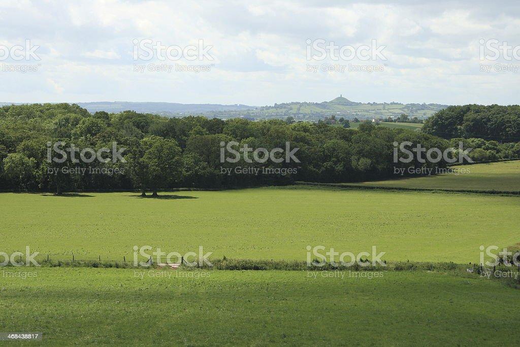 Somerset meadow stock photo