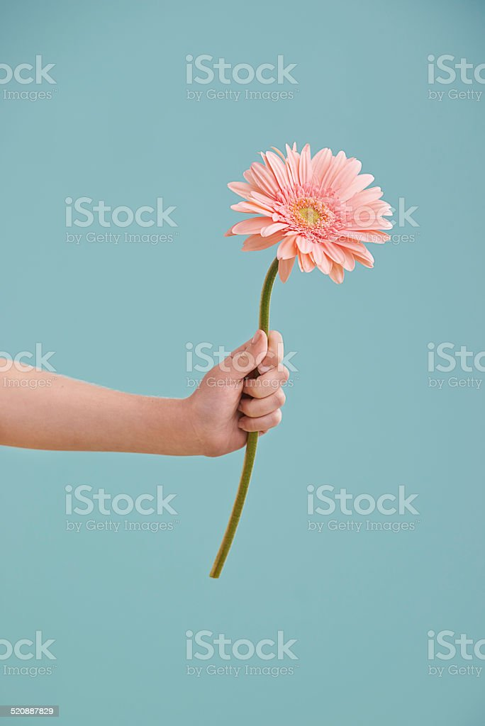 Something to brighten up your day stock photo