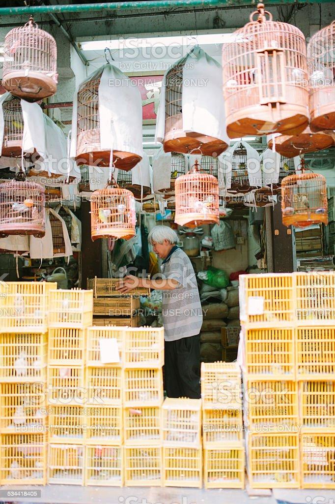 Song birds vendor. Hong Kong stock photo
