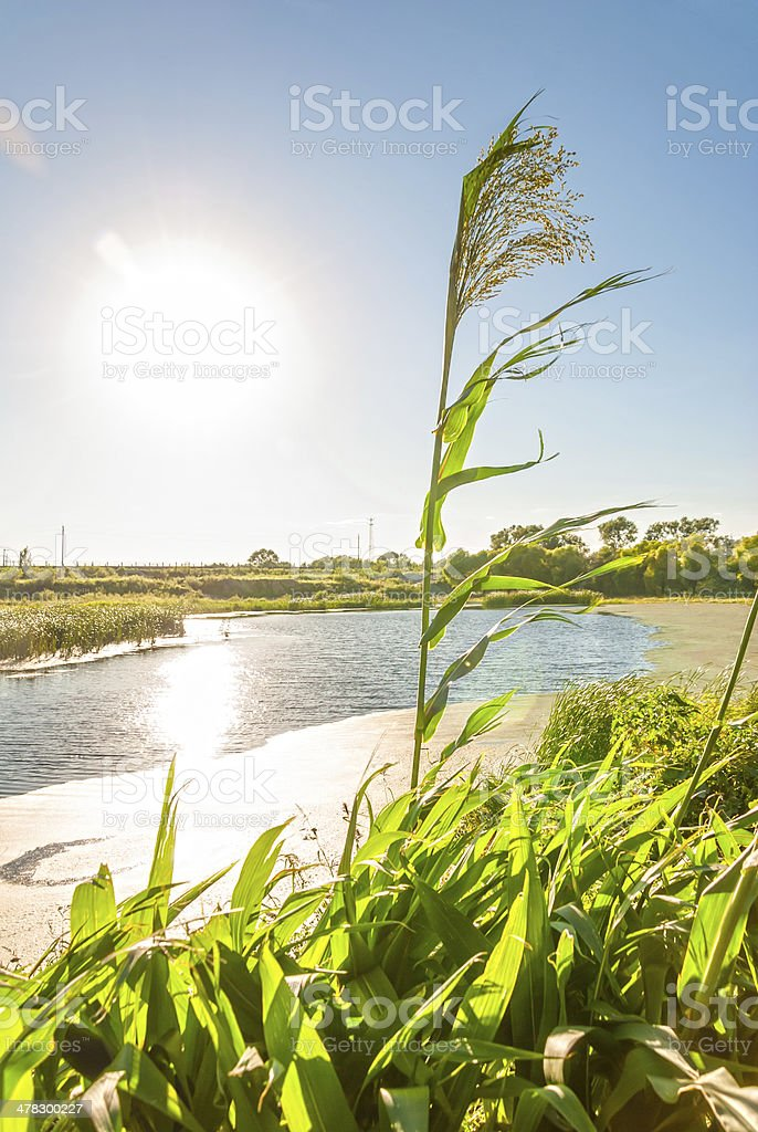 Songhua River at dusk stock photo