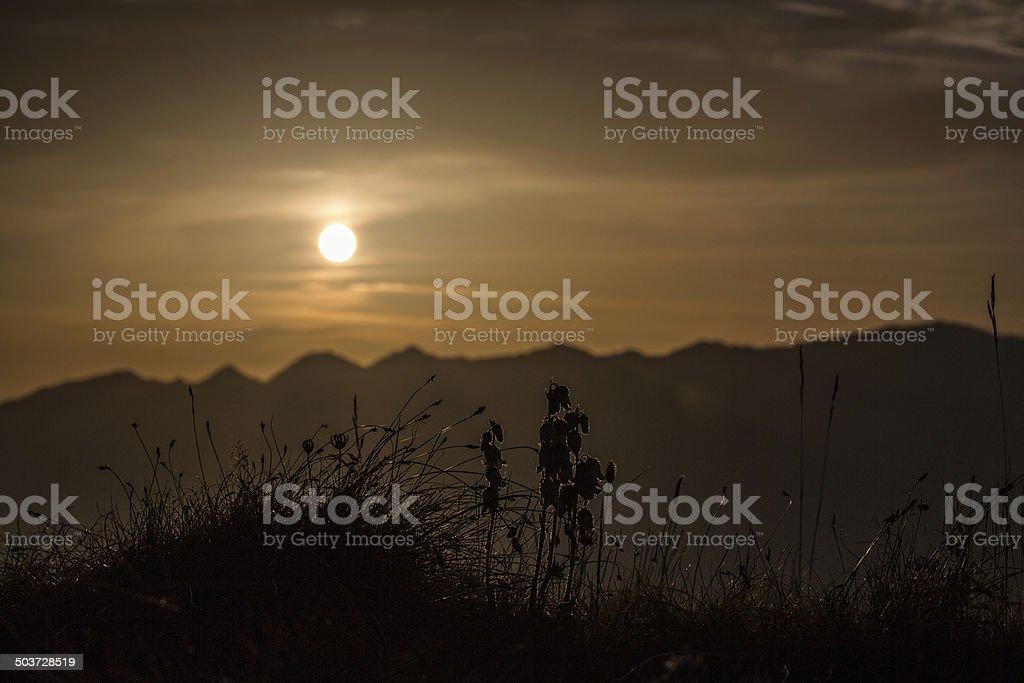 Sonne kommt stock photo