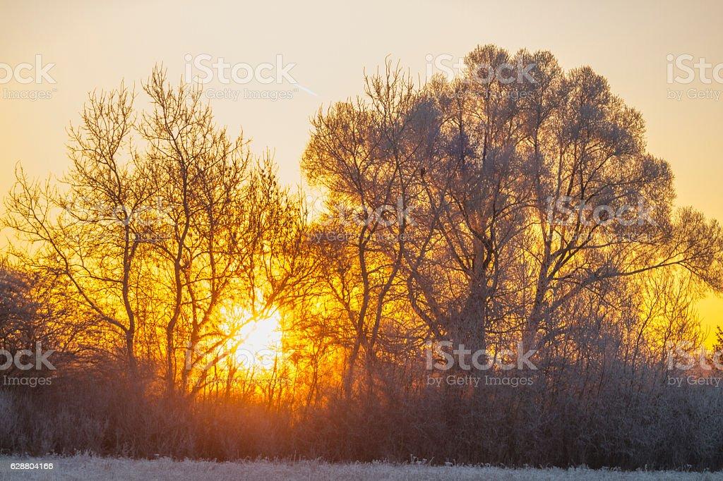 Sonnenaufgang stock photo