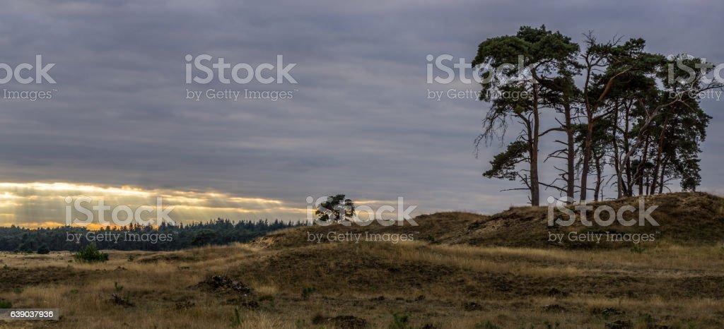 Sonnenuntergang im Nationalpark stock photo