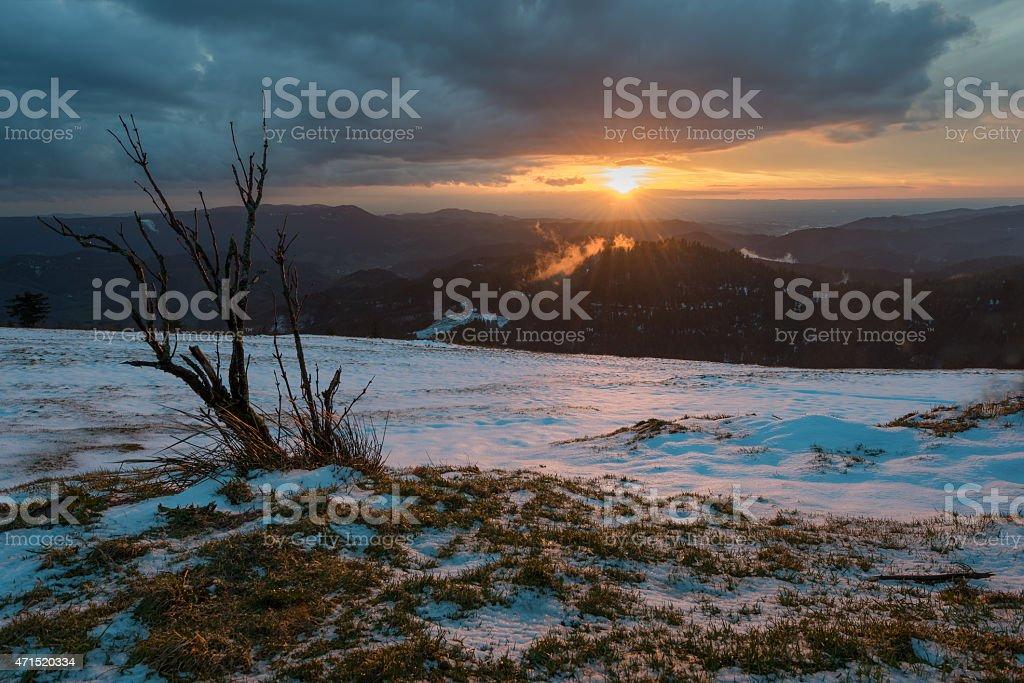 Nationalpark Sonnenuntergang im Schwarzwald photo libre de droits