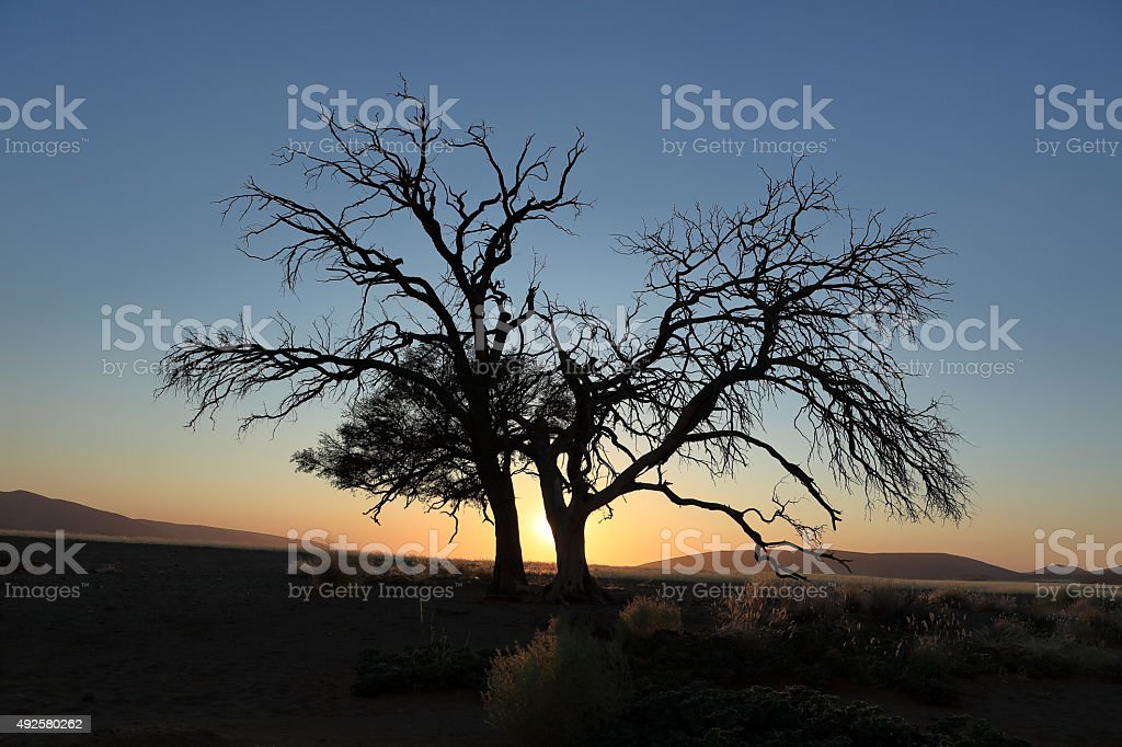 Sonnenuntergang in der Wüste Namib in Namibia stock photo