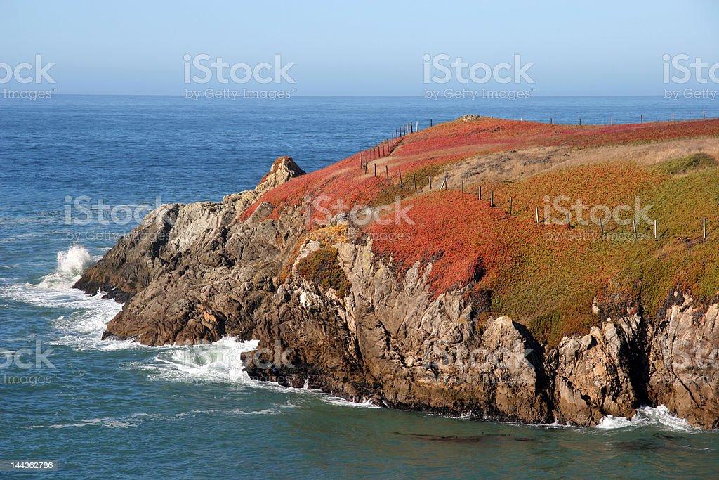 Sonoma Coast Colors royalty-free stock photo