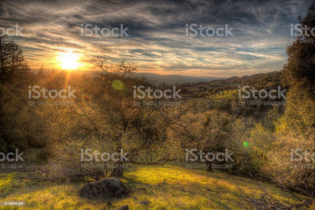 Sonoma County, California stock photo