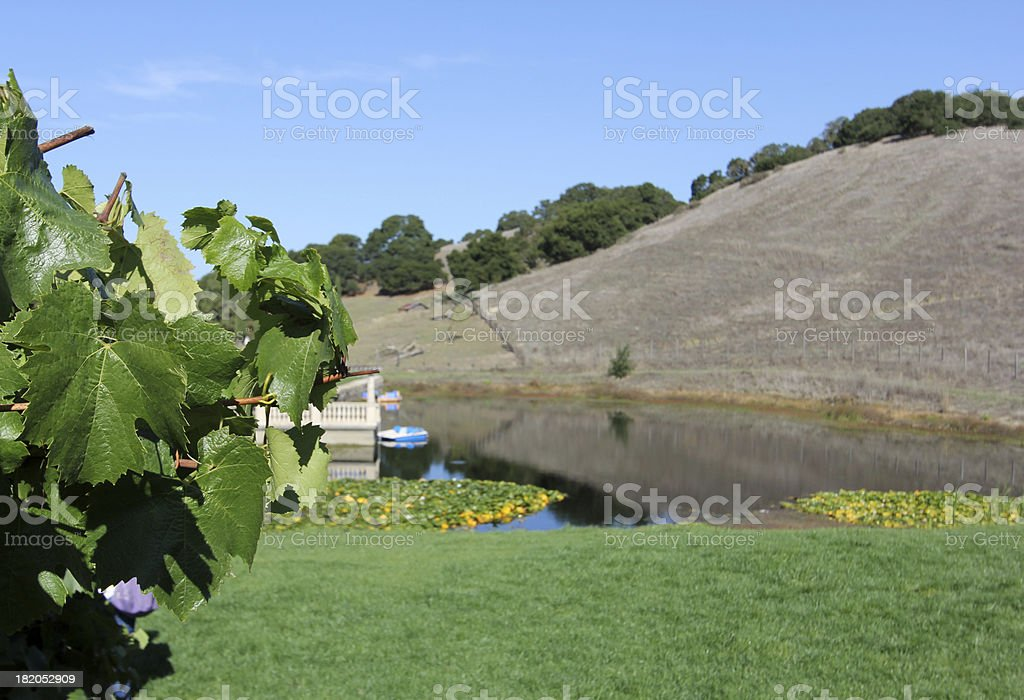 Sonoma in California, USA royalty-free stock photo