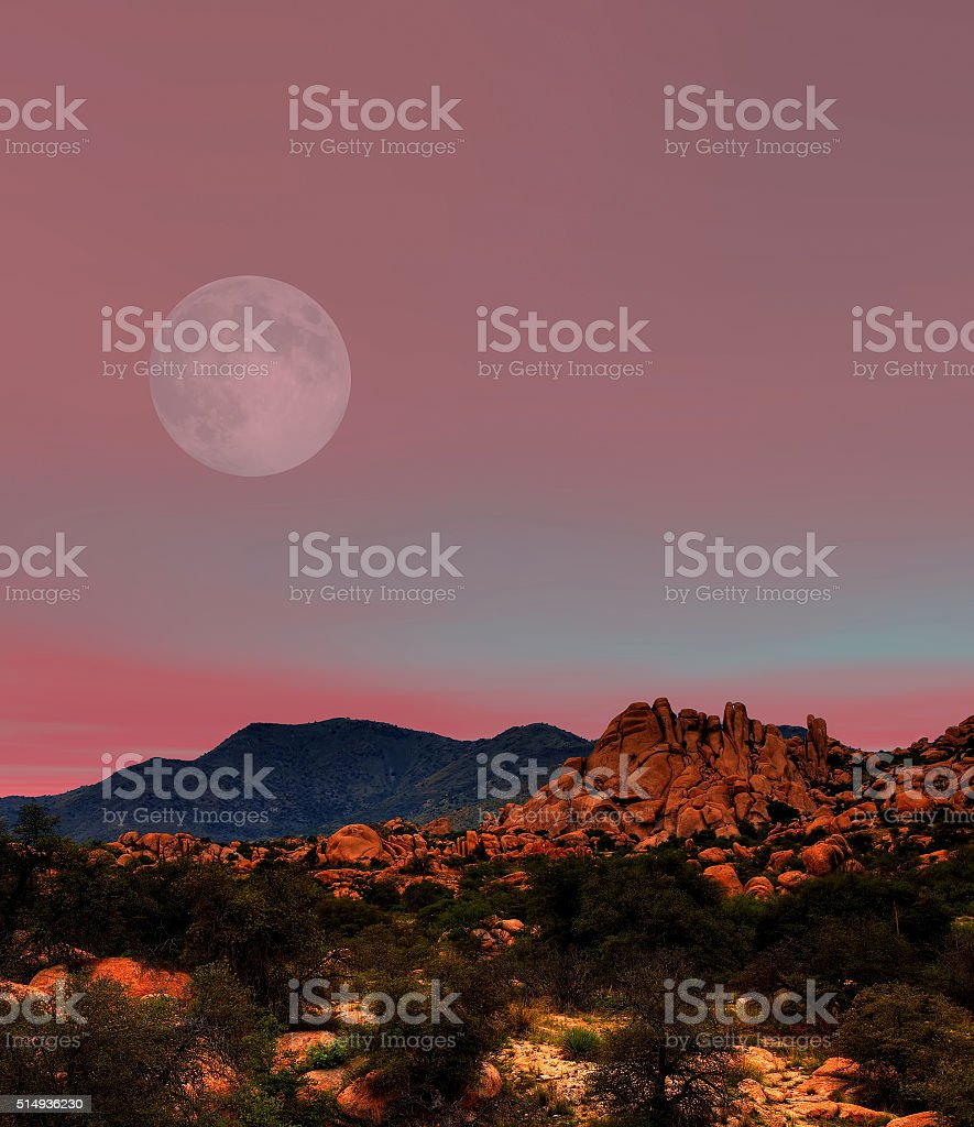 Sonora Desert Moon stock photo