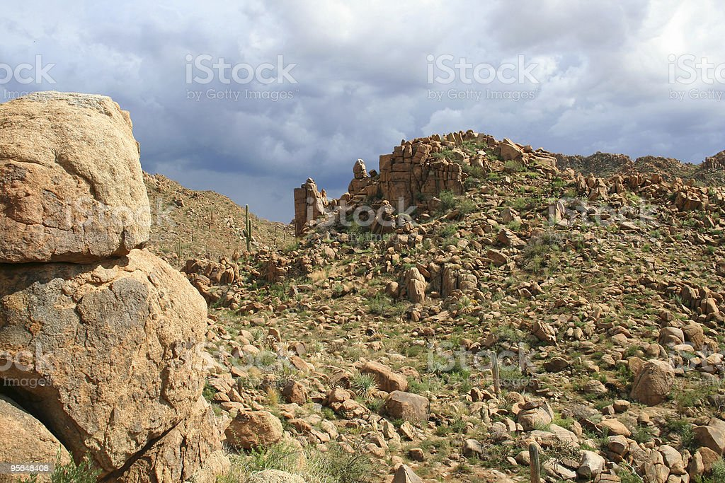 Sonoran Desert Afternoon royalty-free stock photo