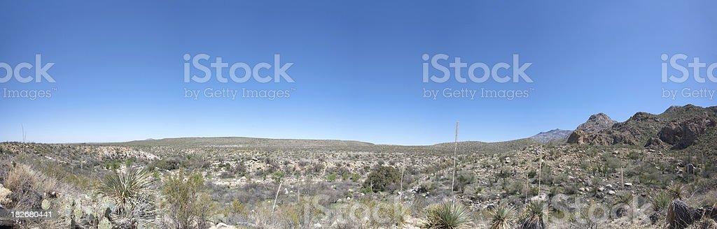 Sonoran Desert Panorama royalty-free stock photo