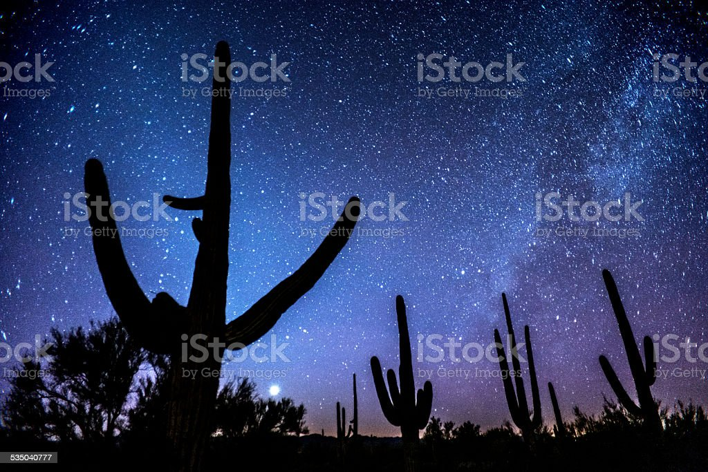 Sonoran Night stock photo
