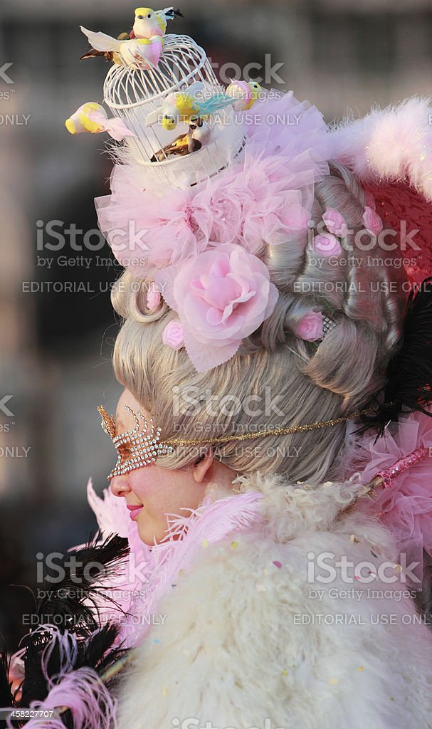 Sophisticated hairdo royalty-free stock photo