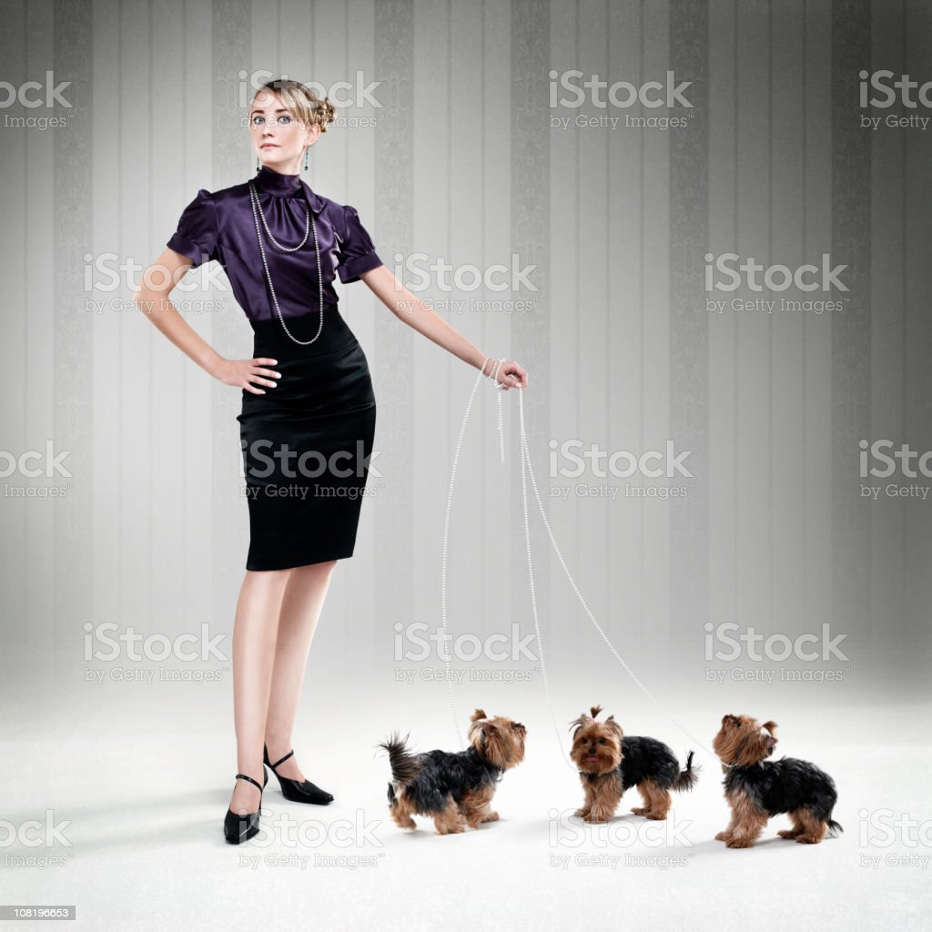 Sophisticated Woman Walking Three Yorkshire Terrier Puppies stock photo