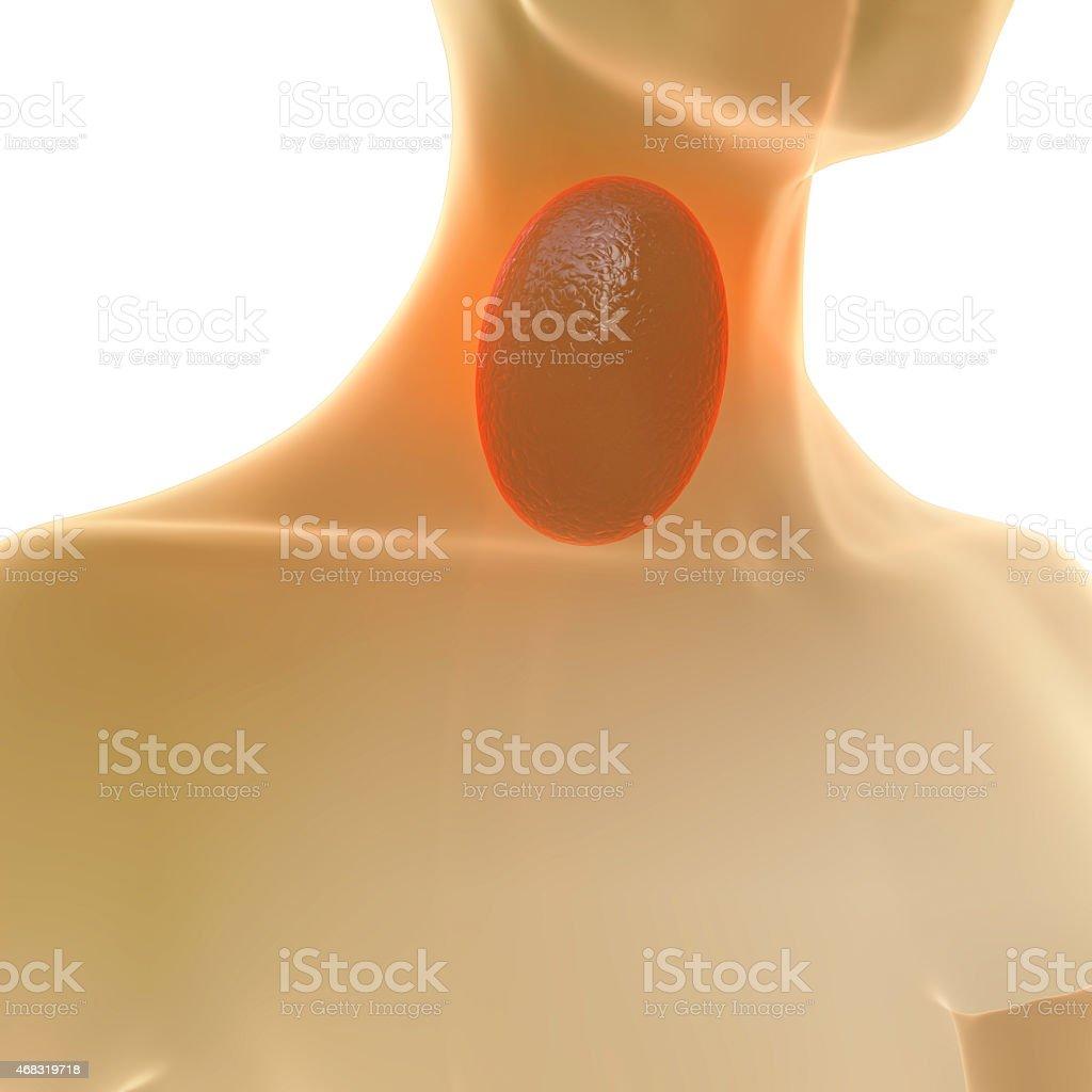 Sore Throat - 3d rendered illustration stock photo