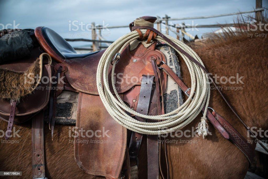 Sorrel horse saddled up and ready to ride stock photo