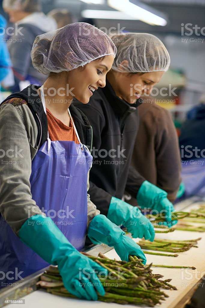 Sorting through the latest crop stock photo