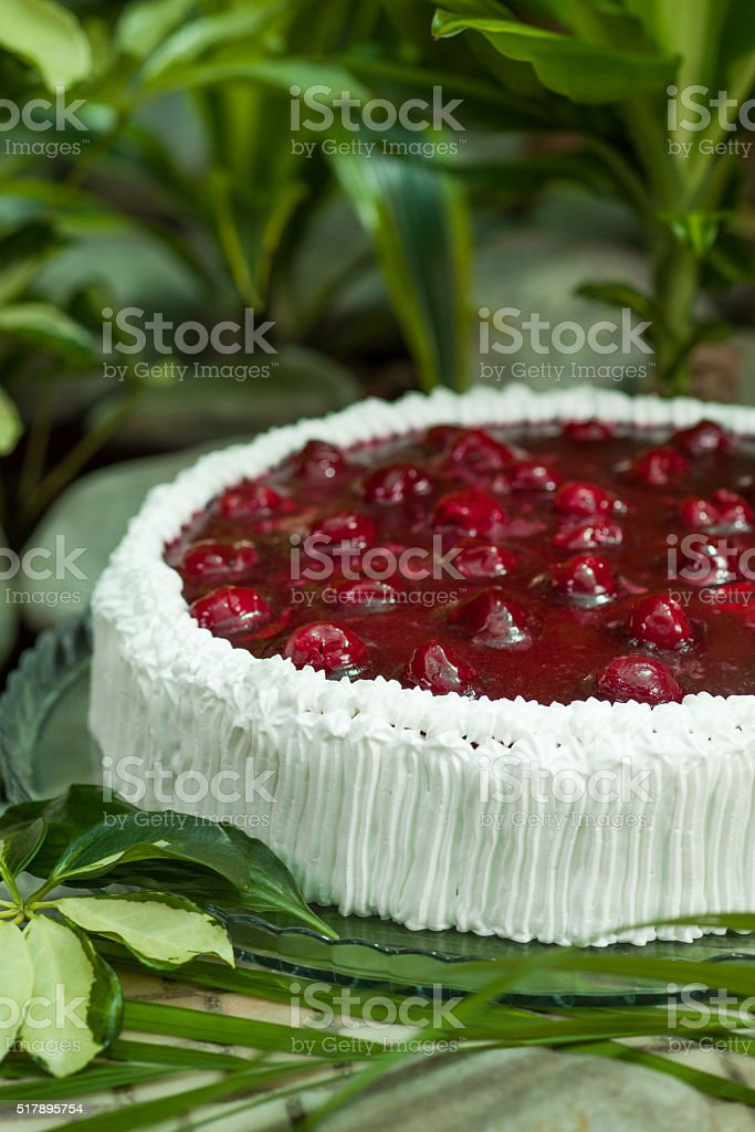 souffle cake with cherries in jelly, topped with whipped cream stock photo