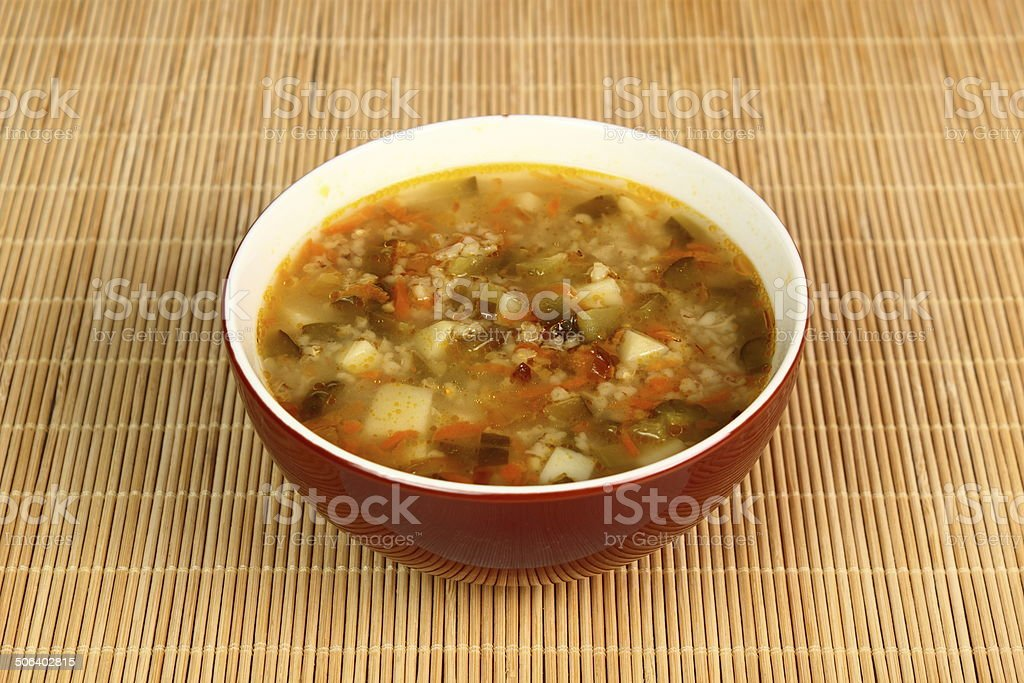 Soup from pickled cucumbers stock photo