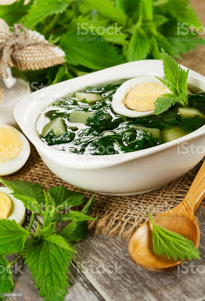 Soup of nettles stock photo