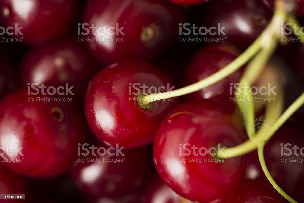 Sour cherries royalty-free stock photo