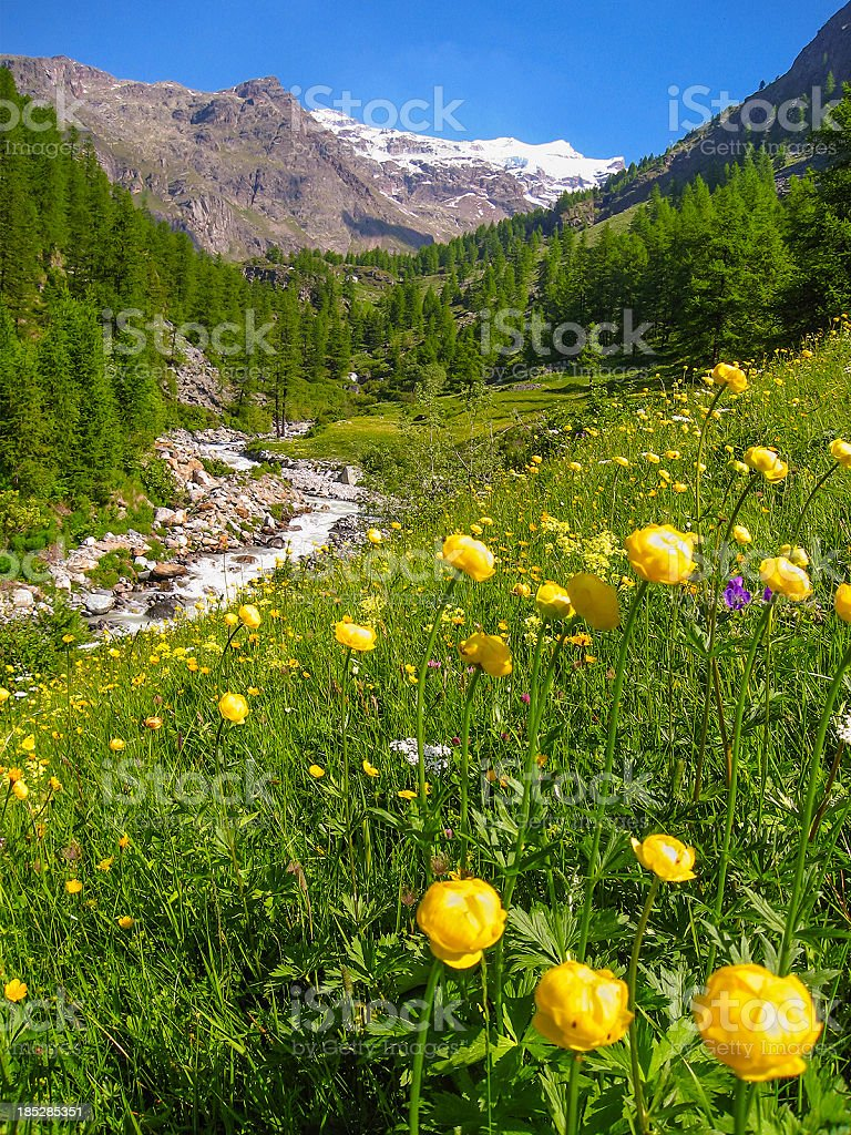 Sources Of Lys, Aosta Valley stock photo